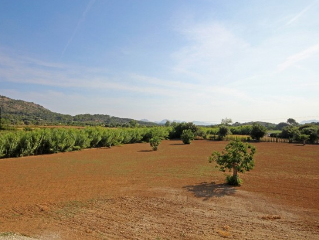 Rustic villa for sale in Pollensa